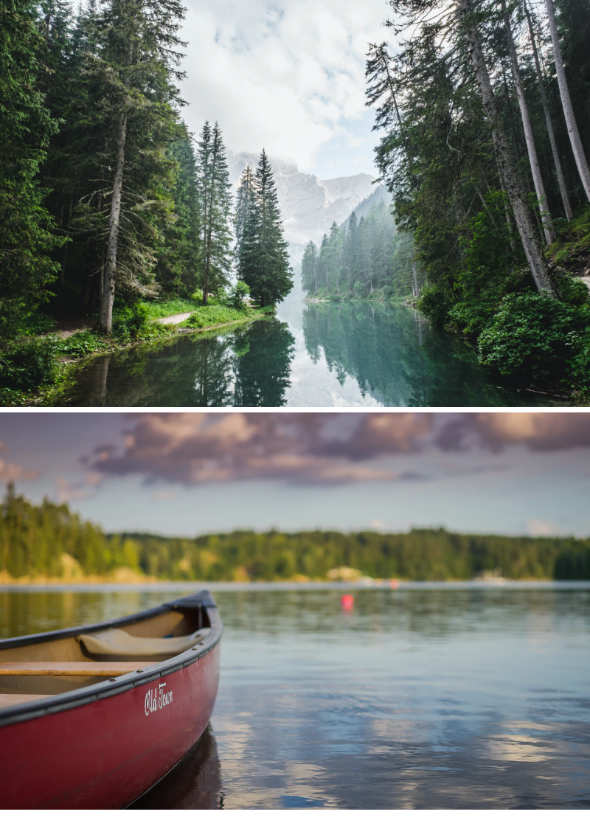 forest and a red canoe